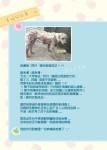 幸福狗筆記本內頁-幸福狗阿丹的故事