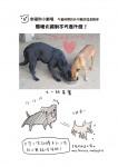 幸福狗筆記本內頁-幸福狗劇場