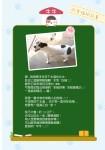 幸福狗筆記本內頁-幸福狗牛牛的故事