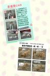 幸福狗筆記本內頁-幸福狗CNR&幸福狗劇場