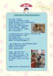 幸福狗筆記本內頁-幸福狗圈圈的故事